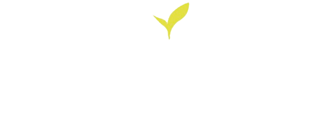 MBI center logo